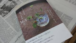 DSC01734.JPG